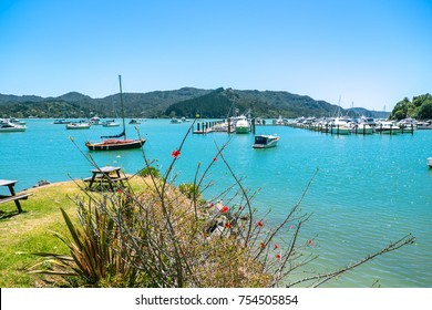 Whangaroa Harbour and marina, Far North District, Northland, New Zealand NZ - moored boats and grassy area for picnic bench