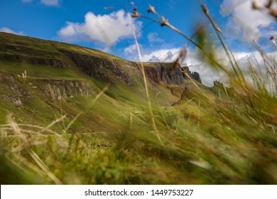What a beetle see in Isle of Skye, Sunny day at Quiraing, Isle of Skye. Quiraing from frog perspective, in the grass,