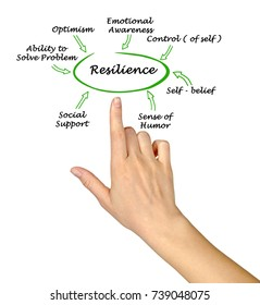 What contribute to resilience