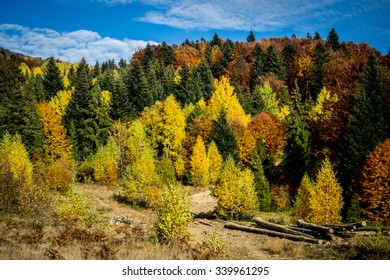 What could be more beautiful than autumn in the mountains