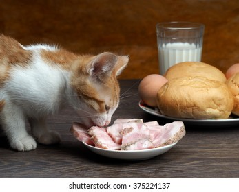 What to feed a kitten and how? Cat on a table eating a ham from a saucer. On the table, bread, a glass of milk. Cat eating human food. Muzzle kitten large