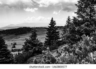 what the paradise look like from cima Manderiolo Asiago