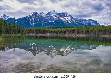 What a wonderful and beautiful mountain reflection . Some branches at the bottom of the lake. The clouds gives a perfect natural canvas.