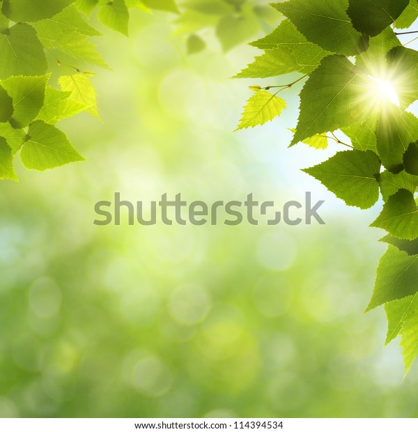 Whats a funny nice day! Abstract natural backgrounds