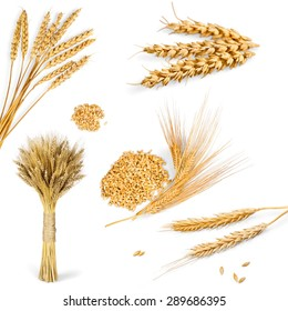 Wheat, Barley, Cereal Plant.