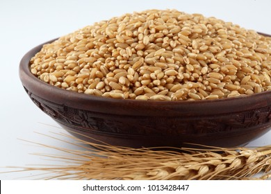 Wheat  Bunch of wheat ears, dried grains in wooden bowl on white background. Cereals harvesting, bakery products