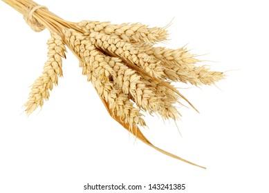 wheat bundle isolated on white