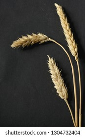 Wheat ears on black paper background