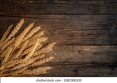 Wheat ears on rustic wooden background.