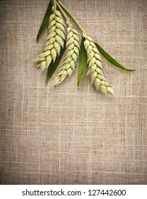 wheat ears on sack texture surface background