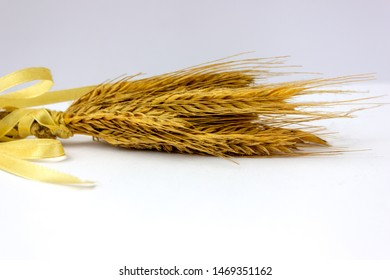 wheat ears with yellow band on a white background