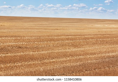 Wheat field after harvest in August. Beautiful blue sky and clouds over it. Steppe zone of Ukraine. Infinite fields.