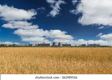 wheat field and factory
