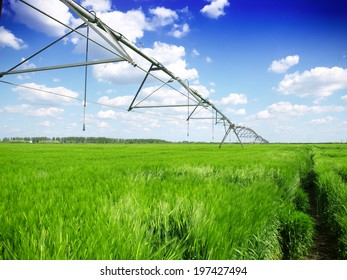 wheat field and irrigation equipment
