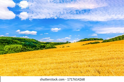 Wheat field mountain summit landscape. Wheat field landscape. Summer wheat field agriculture