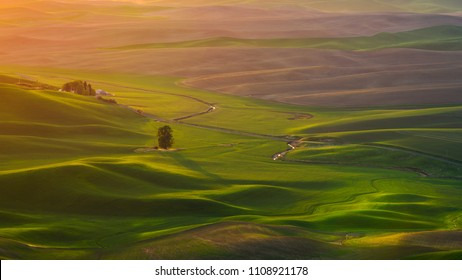 Wheat field and Palouse river at Palouse, Washington as seen from Steptoe Butte during sunset.