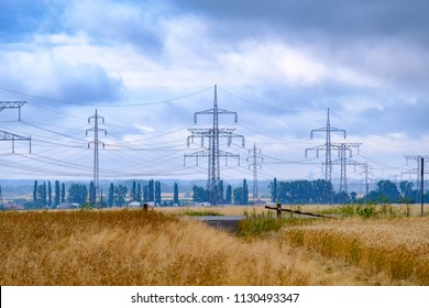 Wheat field with power lines. Summer rural landscape in Slovakia