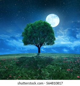 Wheat field and tree in night sky with moon.
