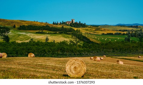 Wheat field Tuscany, Italy, Europe. Rural scenery. Background of ripening of wheat field. Rich harvest concept. Perfect harvest landscape with straw bales amongst fields.