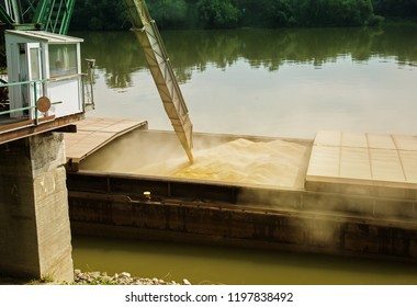 Wheat filled in river ship for transportation