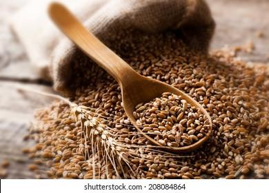 調理用具付き組成物中の小麦粒