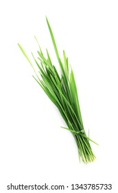 Wheat grass on white background, top view