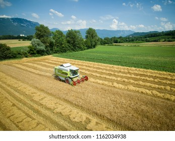 Wheat harvest - aerial photography of combine harvesting grain - agriculture