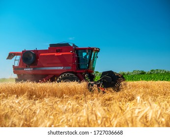 Wheat harvesting in the summer. Red harvester working in the field. Golden ripe wheat harvest agricultural machine harvester on the field. Dnipro /Ukraine - 08.10.2019