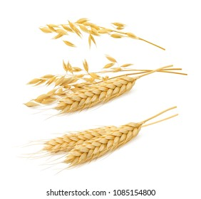 Wheat and oat cereal set isolated on white background. Package design elements with clipping path