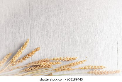 Wheat, oats, millet. Wooden white background. Top view. Free space.