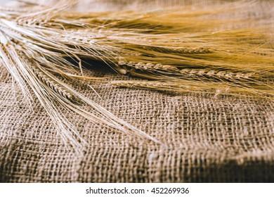 Wheat on sackcloth