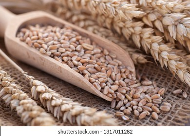 Wheat on wooden ground