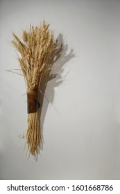 Wheat sheaf attached to a beam. bundles of wheat ears hanging on white wall