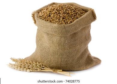 Wheat in small burlap sack