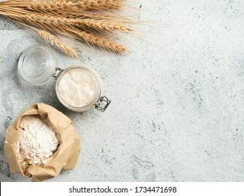 Wheat sourdough starter. Top view of bread making ingredients - glass jar with sourdough starter, flour in paper bag and ears over gray cement background. Copy space for text or design.