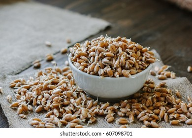 wheat sprouts in a white ceramic bowl standing on piece of fabric material
