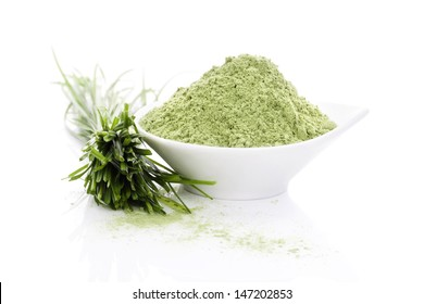 Wheatgrass blades and barley grass ground powder isolated on white background with reflection. Natural organic healthy living. Superfood.