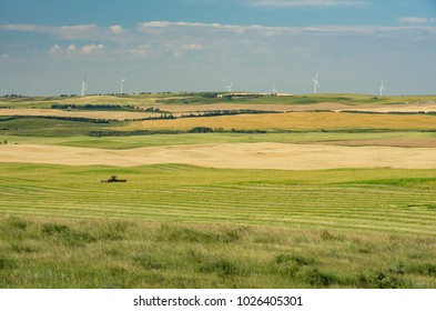 Wheatland County, Alberta, Canada.  Farming in the Wintering Hills south of Drumheller.