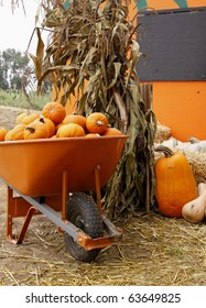 Wheel barrow full of pumpkins