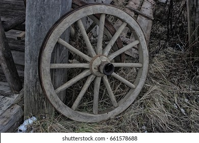 Wheel from the cart
