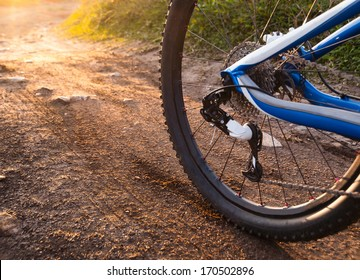 Wheel mountain bike bicycle detail in a sunny day