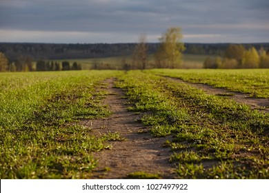 Wheel off-road track in a countryside landscape with a muddy road. Extreme path rural dirt. The spring landscape and traces from the passage of transport on the surface. Fresh grass paints and rain sk