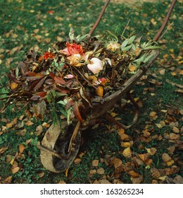 Wheelbarrow with the autumn garden waste