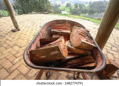 Wheelbarrow of cut up tree firewood logs. Winter is coming concept.