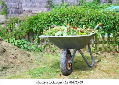 wheelbarrow of waste recycling in the garden