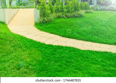 Wheelchair access ramp was built in a park with a bright green lawn, green grass with a disabled path the park landscaping garden design with steep slope trails Designed in the middle of the garden.