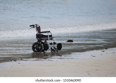 Wheelchair on empty beach, leisure on the sea. Concept of disability, freedom and equal opportunity