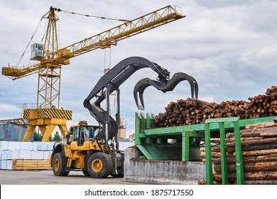 wheeled grapple loader unloads logs onto a feed conveyor in the yard of a woodworking plant