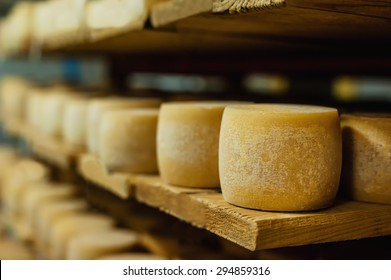 wheels of cheese in a maturing storehouse dairy cellar on wood shelves