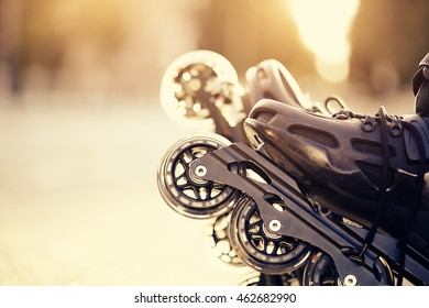 Wheels of roller skates closeup in the rays of the sun.